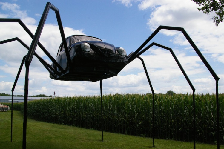 Volkswagon Beetle Spider