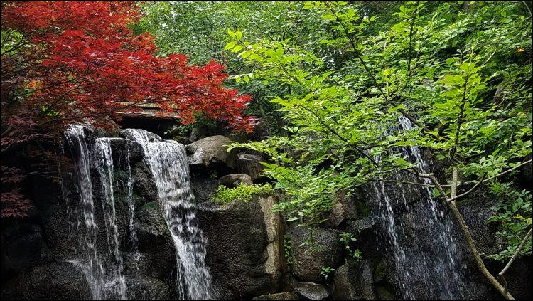 Go Rockford Illinois waterfall